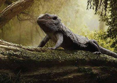mohanad-hossan-bearded-dragon-art-vray-3ds-max-thumb